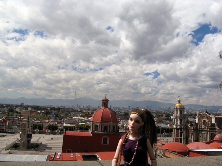 blanca_guadalupe9113